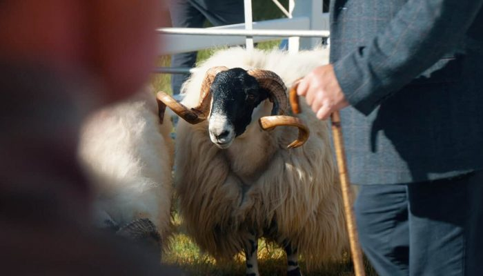 Event Film | Royal Cornwall Show 2019